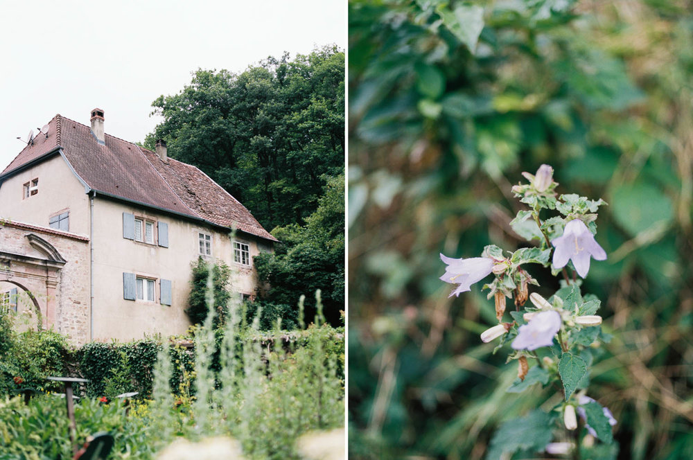 Alsacefilm_0004.jpg