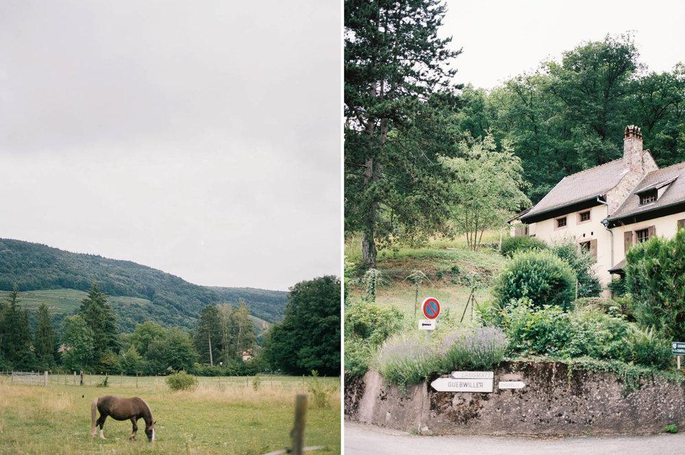 Alsacefilm_0016.jpg