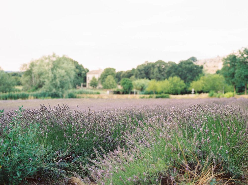ProvenceBlog_0001.jpg
