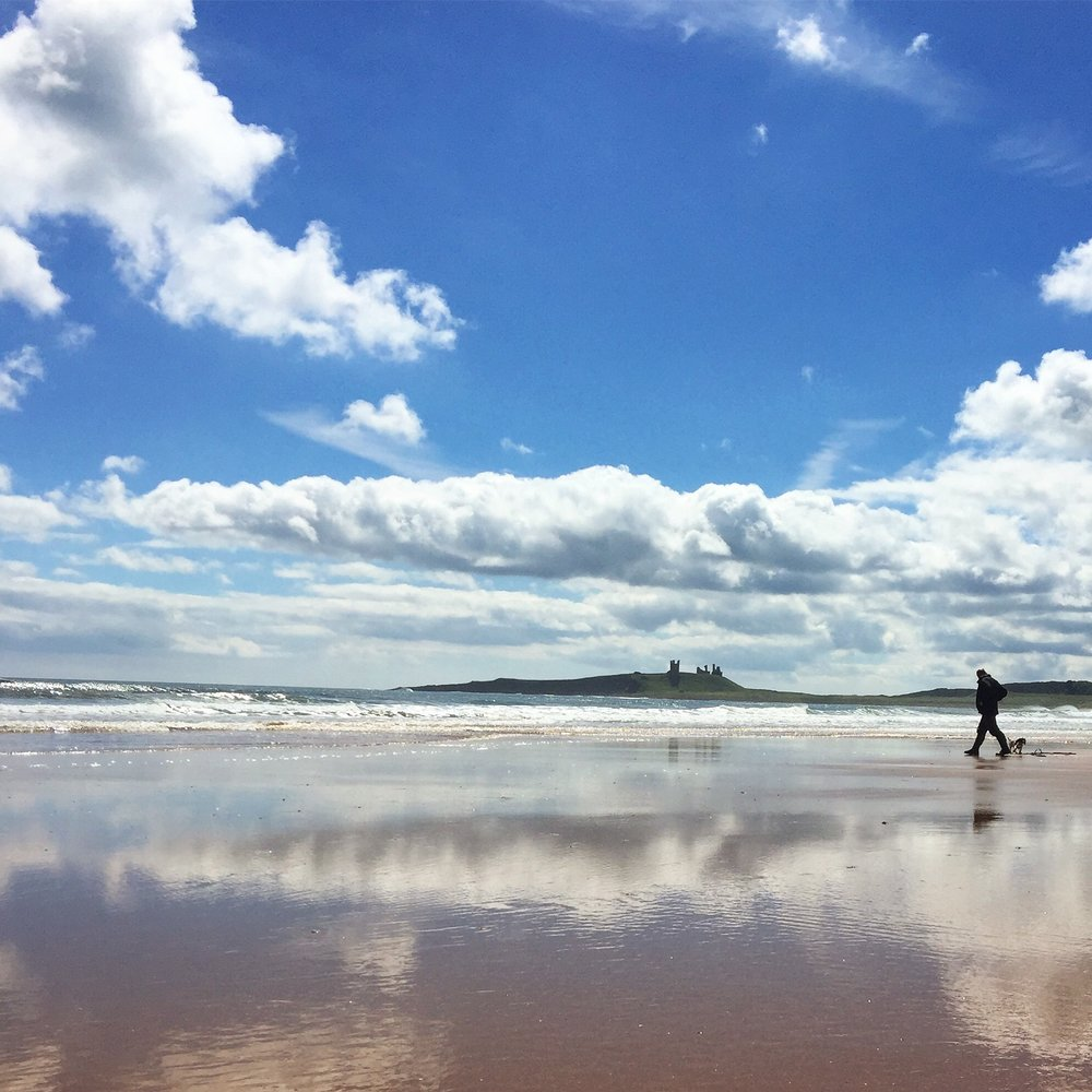 7 top things to do in Northumberland. Famous for delicious fish suppers and beautiful unspoilt beaches, here are the top seven things to do, inside and out.
