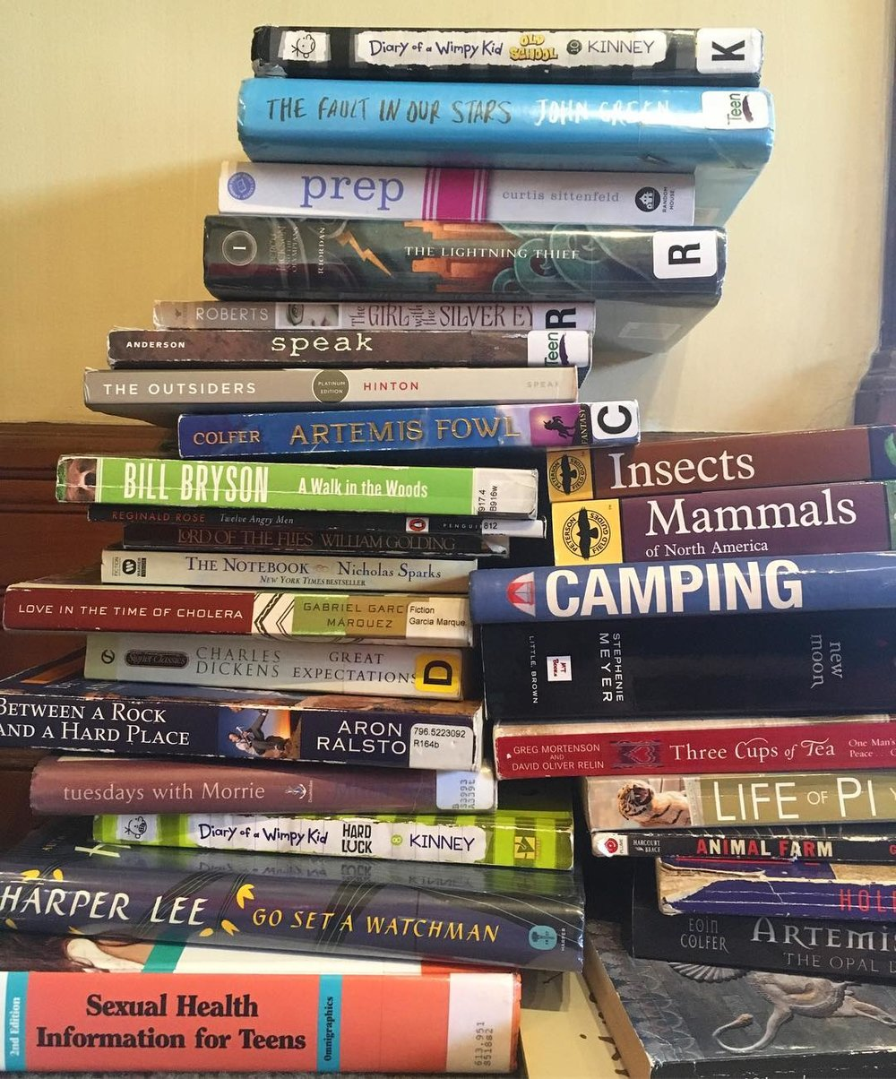 We picked up quite a few books from the Big Book Sale at the Metropolitan Library. This isn't even a quarter of them!