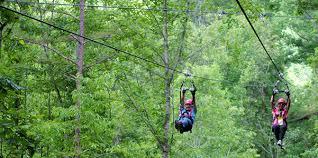ziplining.jpg