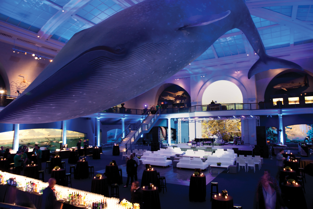 The afterparty for fMC was hosted in the beautiful Ocean Life room at the museum.
