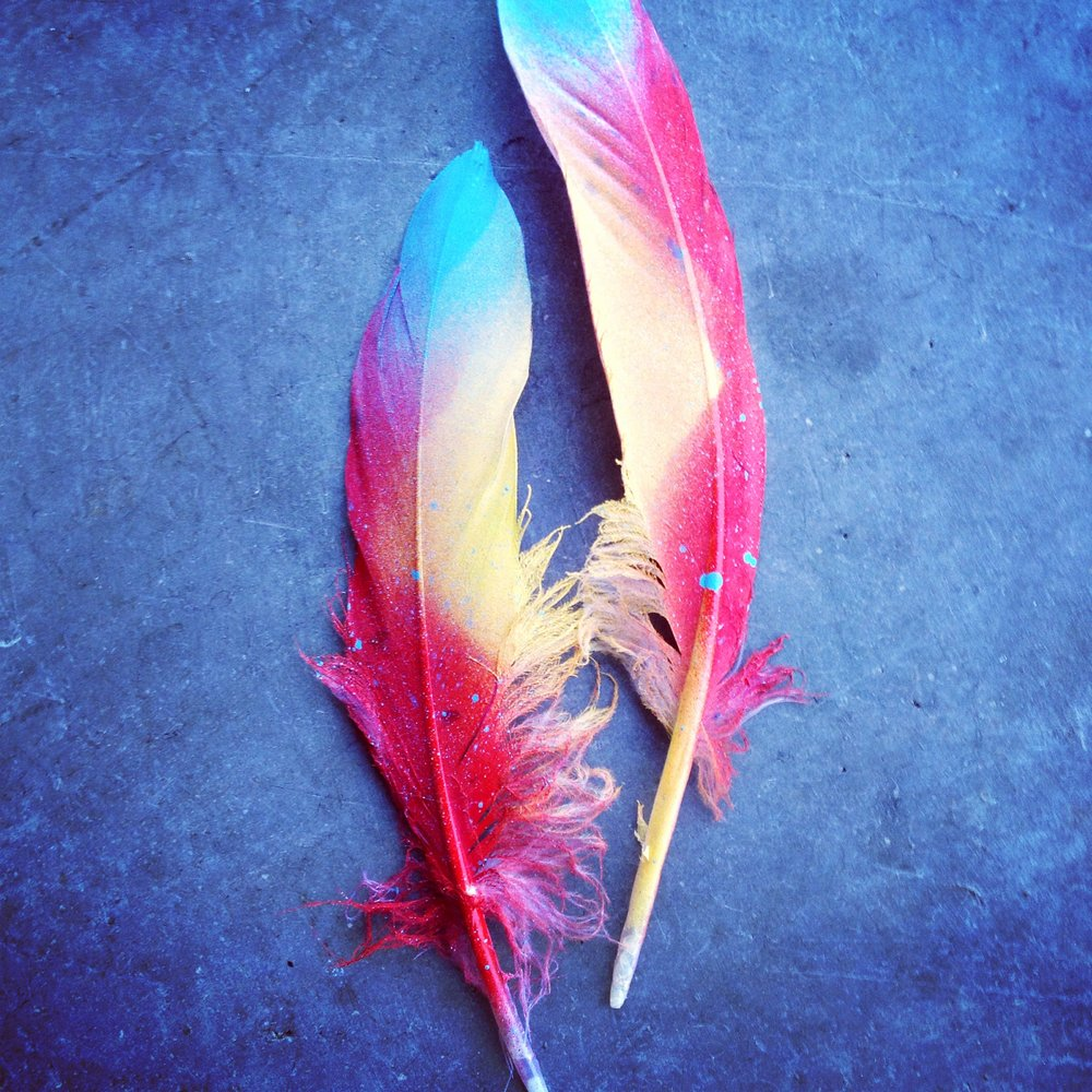 FEATHERS OF COLOR