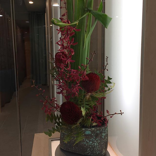 New year flower arrangements!#waraku #ikebana #massage #chatswood #sydney