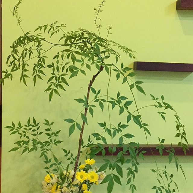 Autumn Ikebana at Shop49 #waraku #ikebana #sydney #chatswood #massage