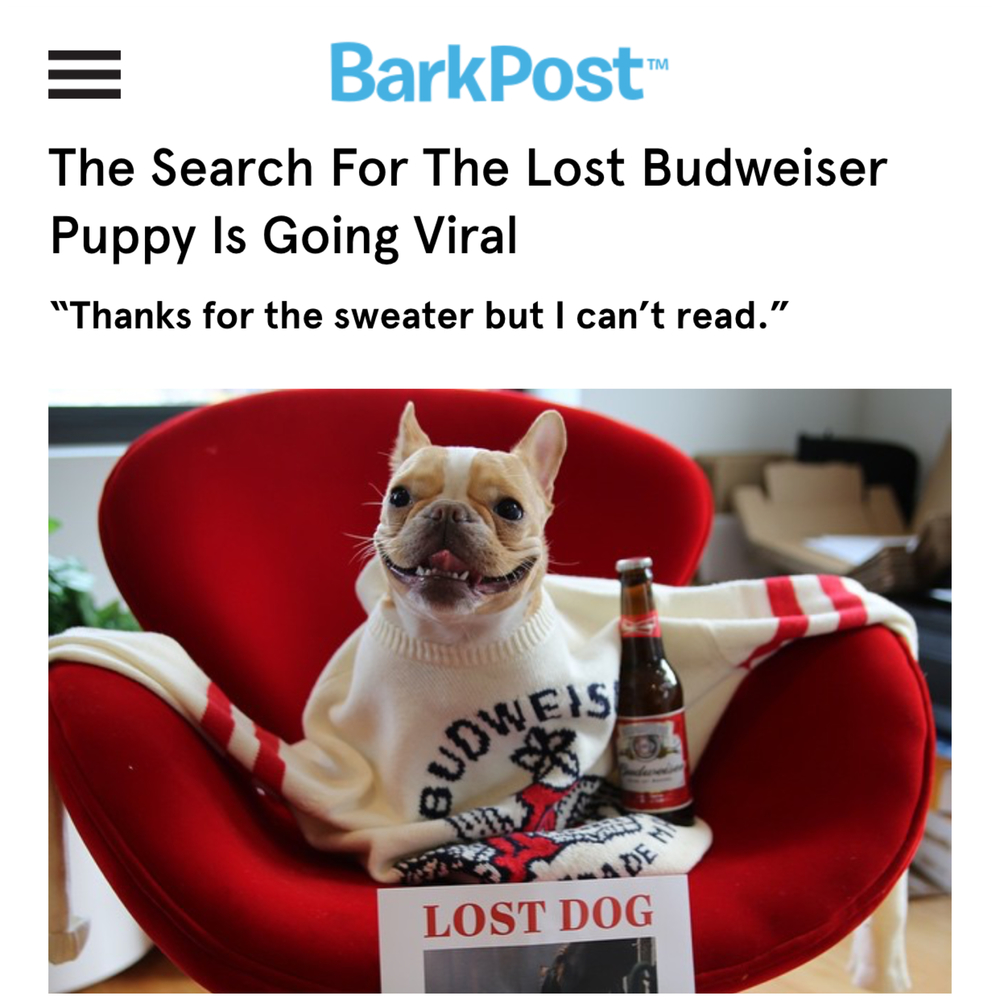 BarkPost