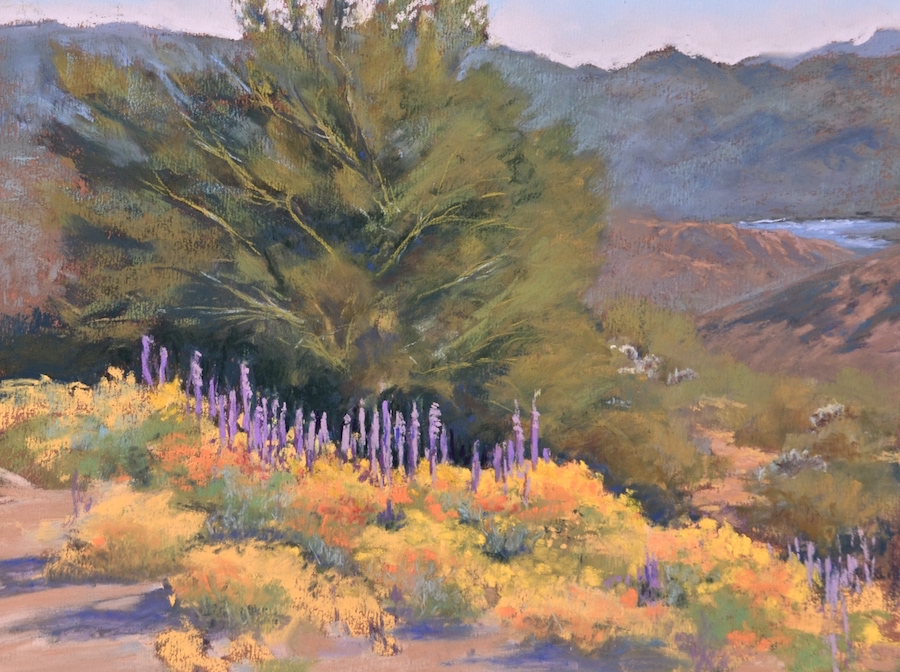 "3rd Place :  Kathy Howard  ""Sonoran Spring"""