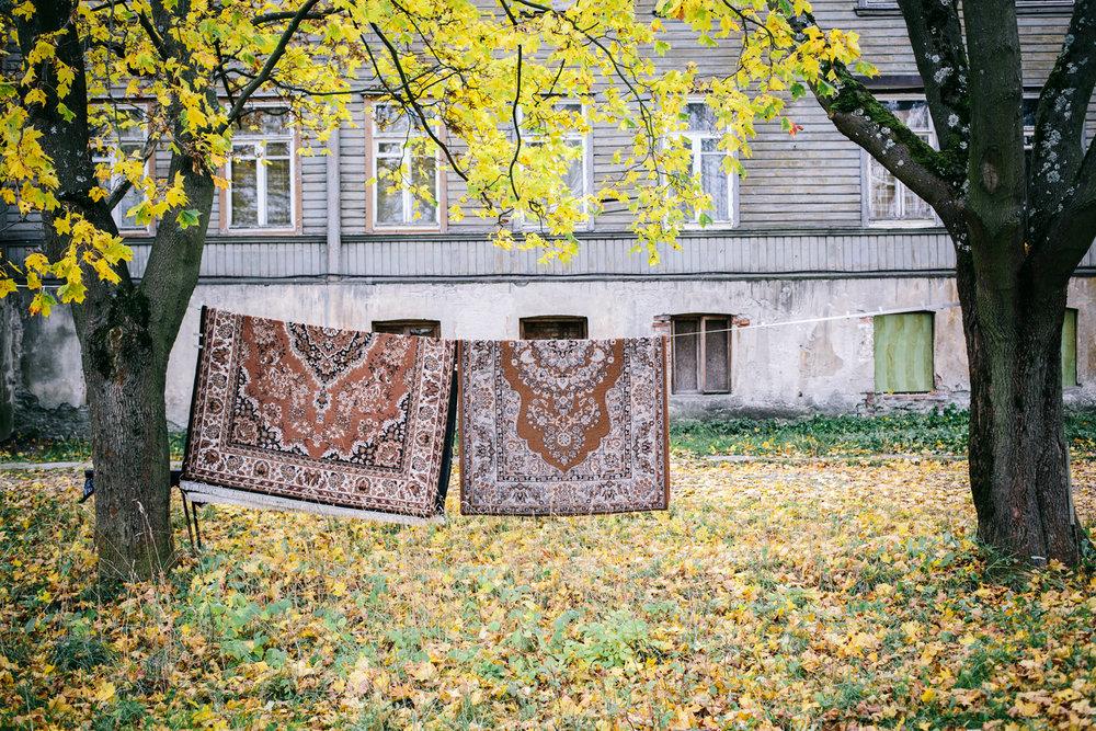 Estonian autumn