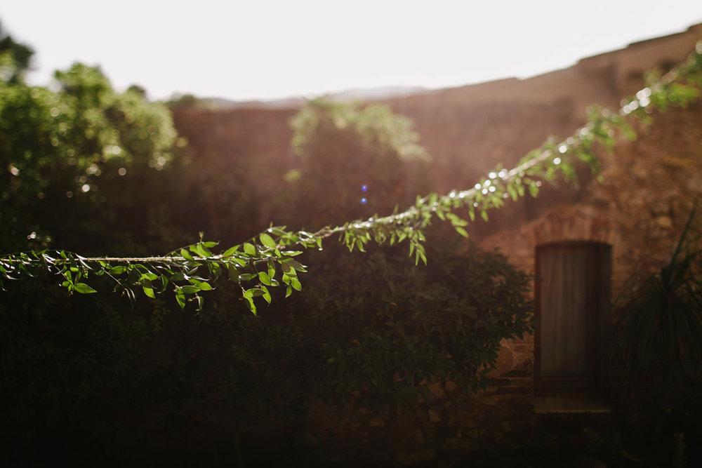 014-florist-bacerlona.jpg