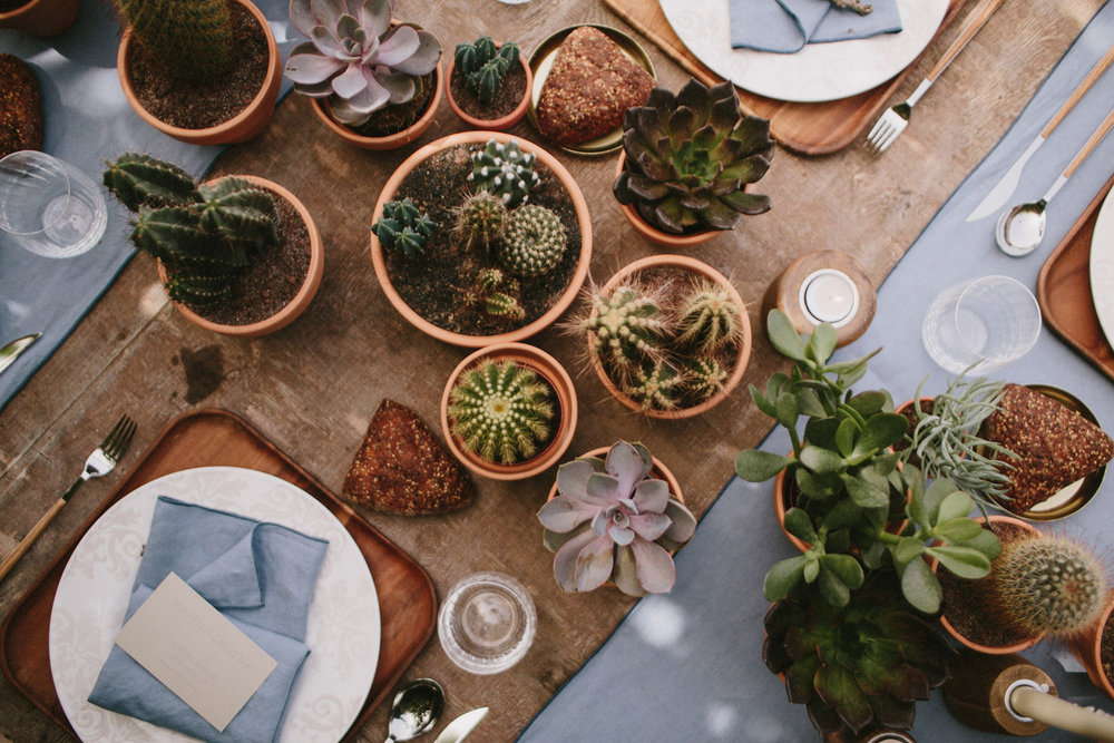 007-cactus-wedding.jpg