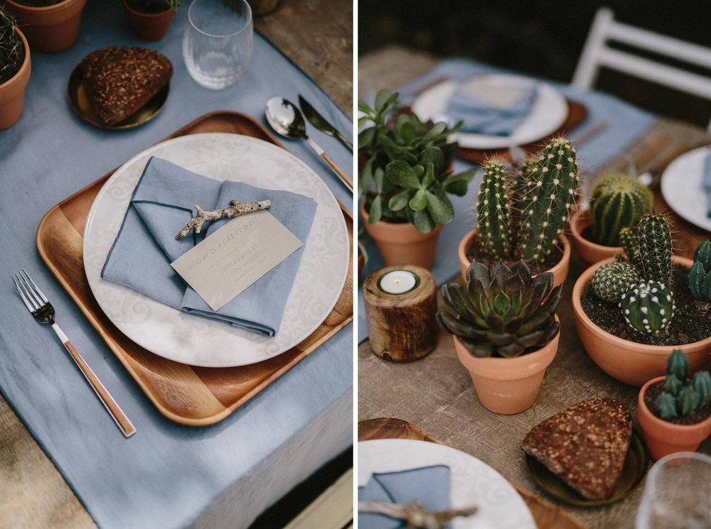 014-cactus-boda-decoracion.jpg