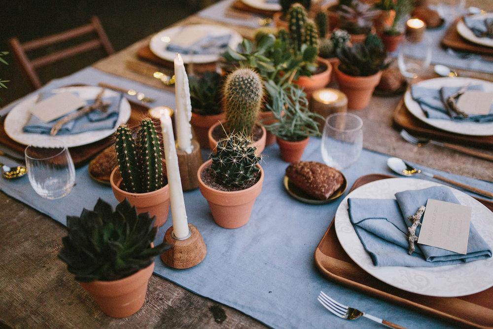 031-cactus-wedding.jpg
