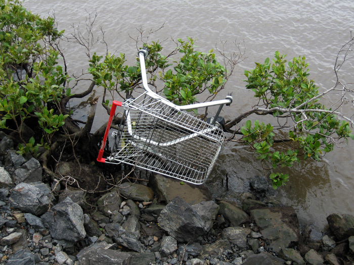 Abandoned oBike thrown in the river