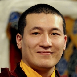 General videos of His Holiness Karmapa