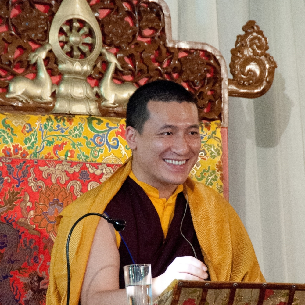 HH Karmapa Thaye Dorje - Supreme Head of the Karma Kagyu
