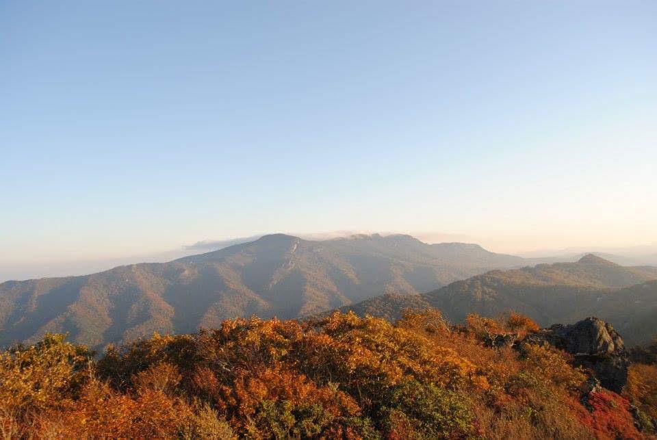 Hike from my home in North Carolina.