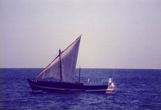 Real Dhow!