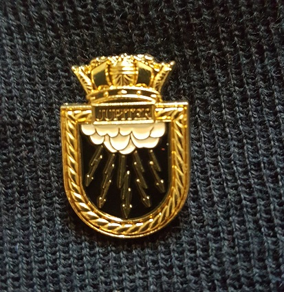 Pin Badge.jpg