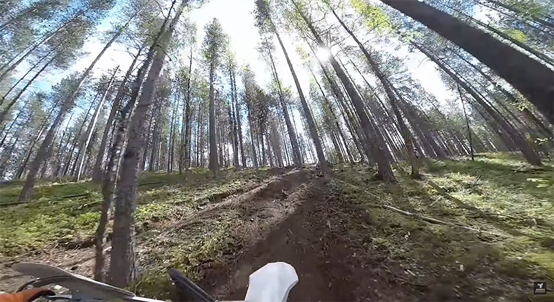 Nimble Squirrel 2017 - Hard Enduro Horrors in Karelia: