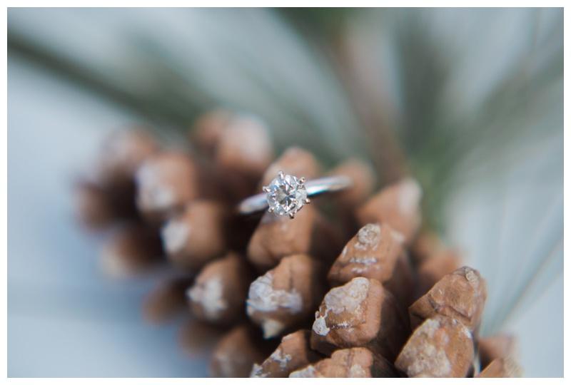 Kate-Alison-Photography-Kerri-Josh-New-Hampshire-Engagement-Session_0001.jpg