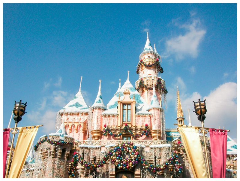 Kate-Alison-Photography-Disneyland-Photopass-Cast-Member_0007.jpg