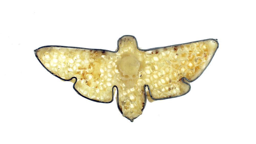 Death's Head Hawkmoth  honeycomb, beeswax skull, steel, brass