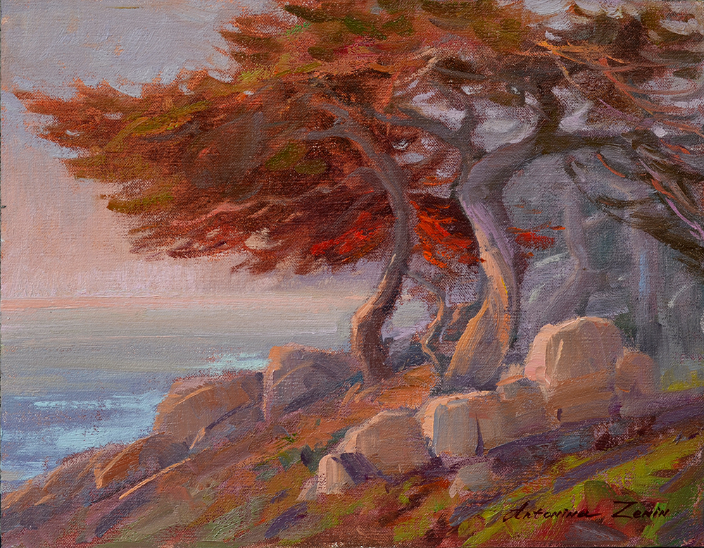 Cypress at Sunset