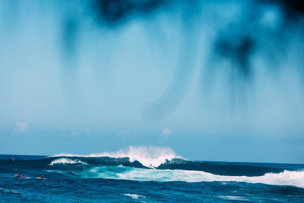 026-Maui-1476.jpg