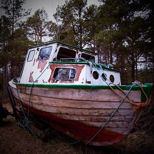 Found a boat in the woods! #boat #woods #old #lost #farfromsea #stranded #vintage #spooky #atmosphere