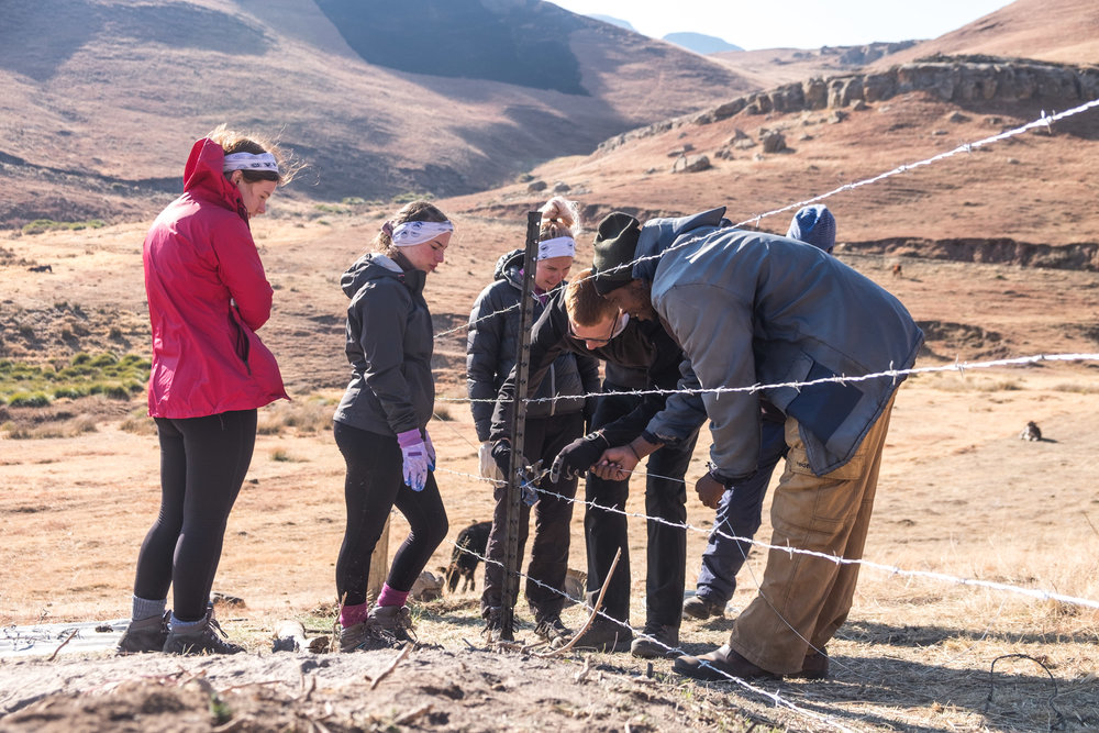 Some of the team learning how to secure barbed wire fences in Lesotho.