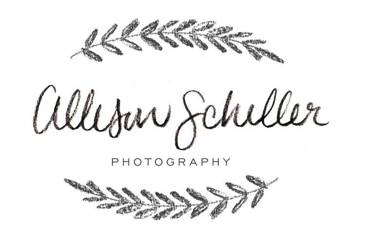 Allison Schiller Photography