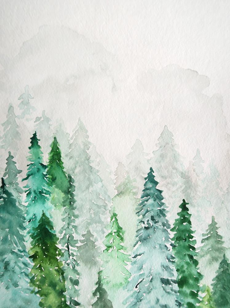 Pines_Crop.jpg