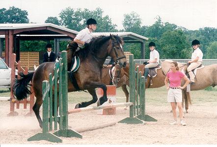 horse2000_2.jpg