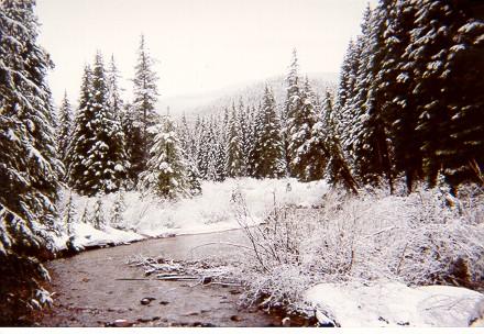 winterpark_5.jpg