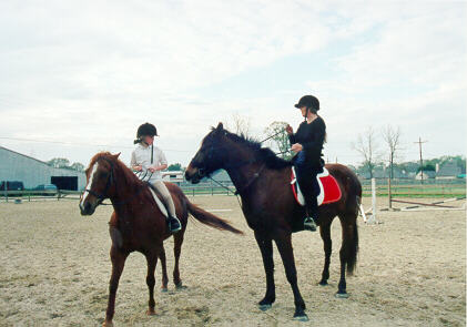 Horse_8.JPG