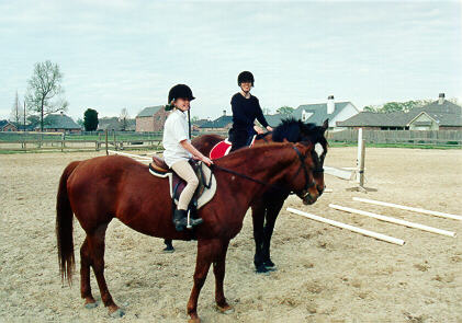 Horse_9.JPG