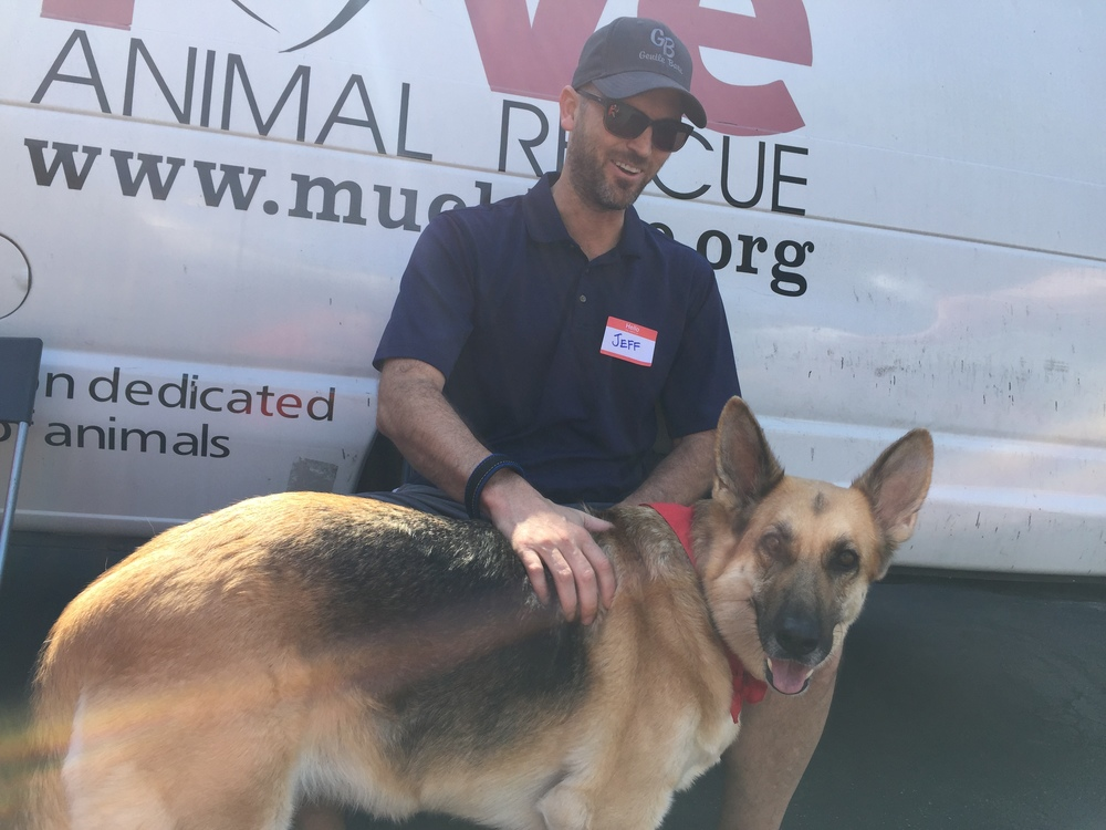 My boyfriend bonding with Wilma, a sweet, kid-loving German Shepherd who's about 5-6 years old. She's looking for her forever home. Learn more about her  here .