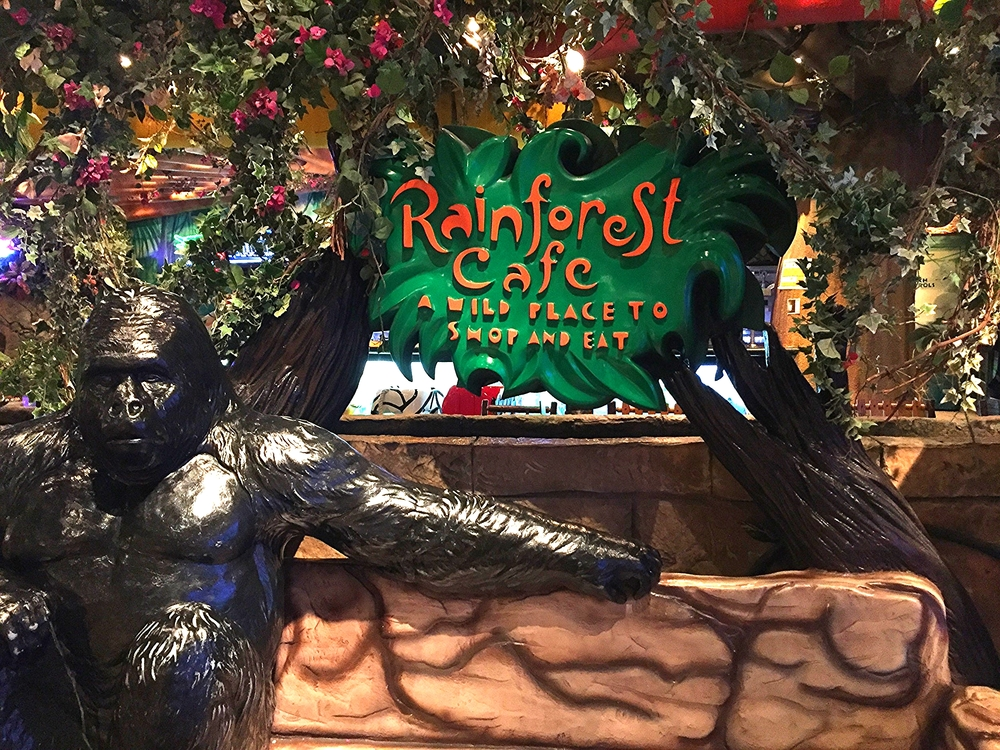 Vegan-friendly Rainforest Cafe in Downtown Disney