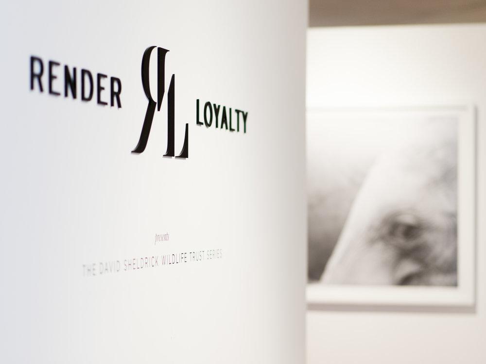 Render Loyalty exhibit in L.A. featuring The David Sheldrick Wildlife Trust series