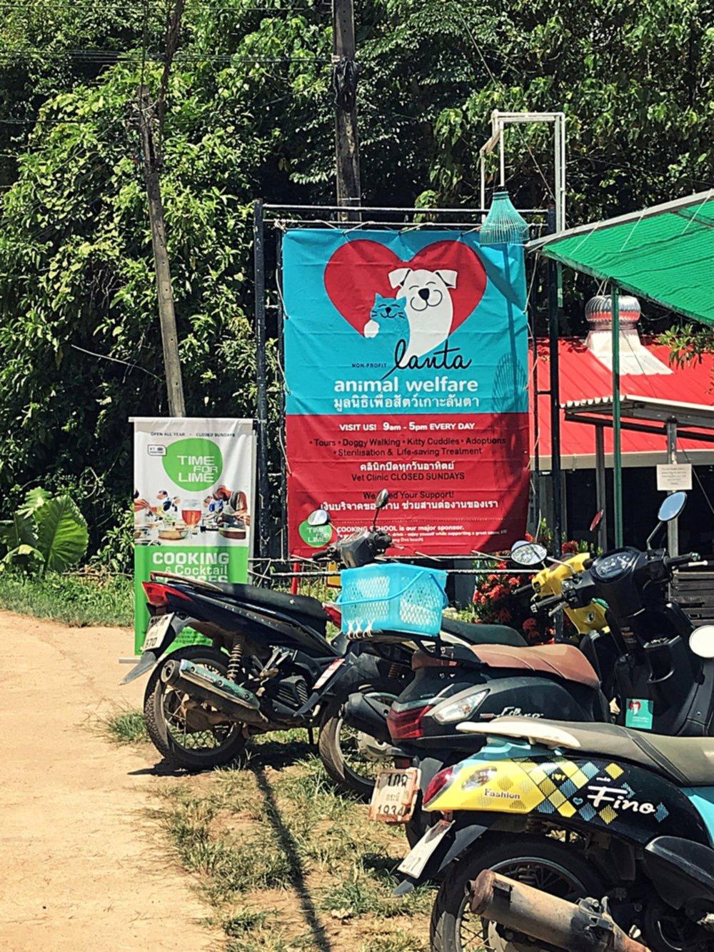 Lanta Animal Welfare, a nonprofit charity on Koh Lanta, Thailand