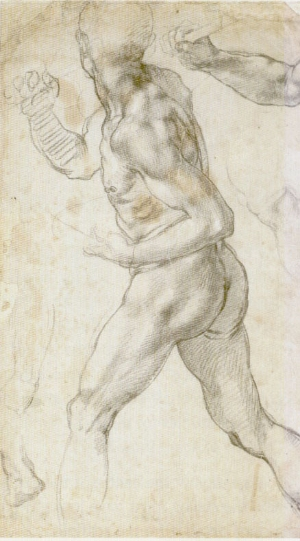 Miguel Ângelo Nu masculino,1504-1505 Teyler Museum