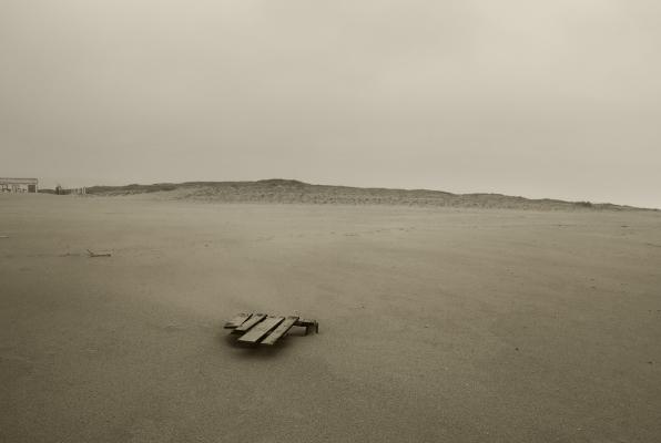 Luís Barreira na praia, 2016 série: 2016 fotografia