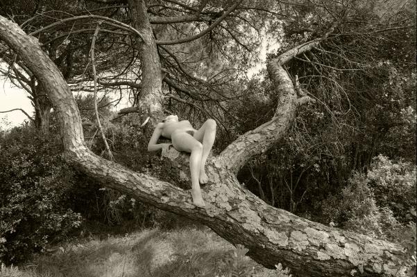 Luís Barreira  nu #004 - Arrábida - 1998  Fotografia  Gelatin Silver print  Série:  De rerum natura