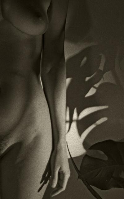 Luís Barreira  sombras, 1990  Fotografia  Gelatin Silver print  Série:  photo graphias