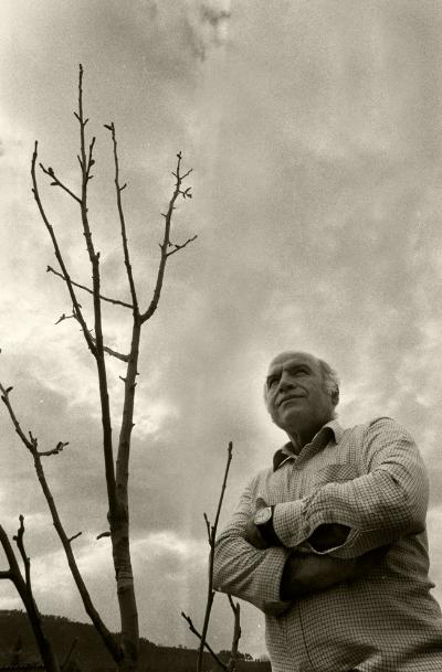 Luís Barreira  Pai, junto à sua nogueira, 1987  Fotografia  Gelatin Silver print  Série: Album
