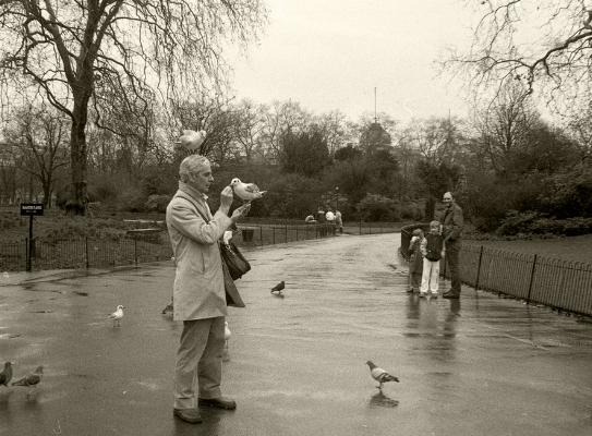 Luís Barreira   man feeding pigeons , 1987  Hyde Park, London  Fotografia  Gelatin Silver print  série:  street photography   arquivo:F_029_4850, 1987