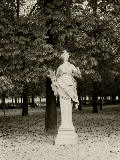 Luís Barreira jardin des tuileries, 1989 Paris Fotografia Gelatin Silver print arquivo: F_064_6005, 1989