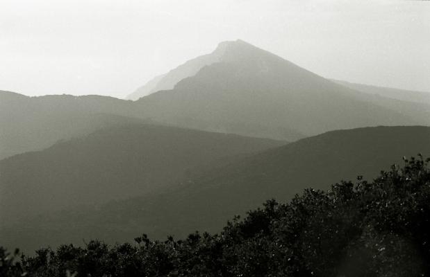 Luís Barreira  Vale do Risco - Arrábida, 1997  Série: Landscapes  arquivo:F_353_1677, 1997