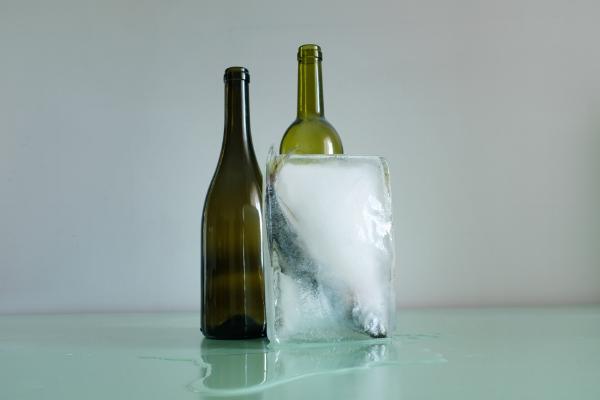 Luís Barreira  duas garrafas e um carapau congelado, 2018  Série:   Still Life    Fotografia  arquivo:05_13_DSCF7492, 2018